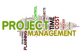 Project Management image2